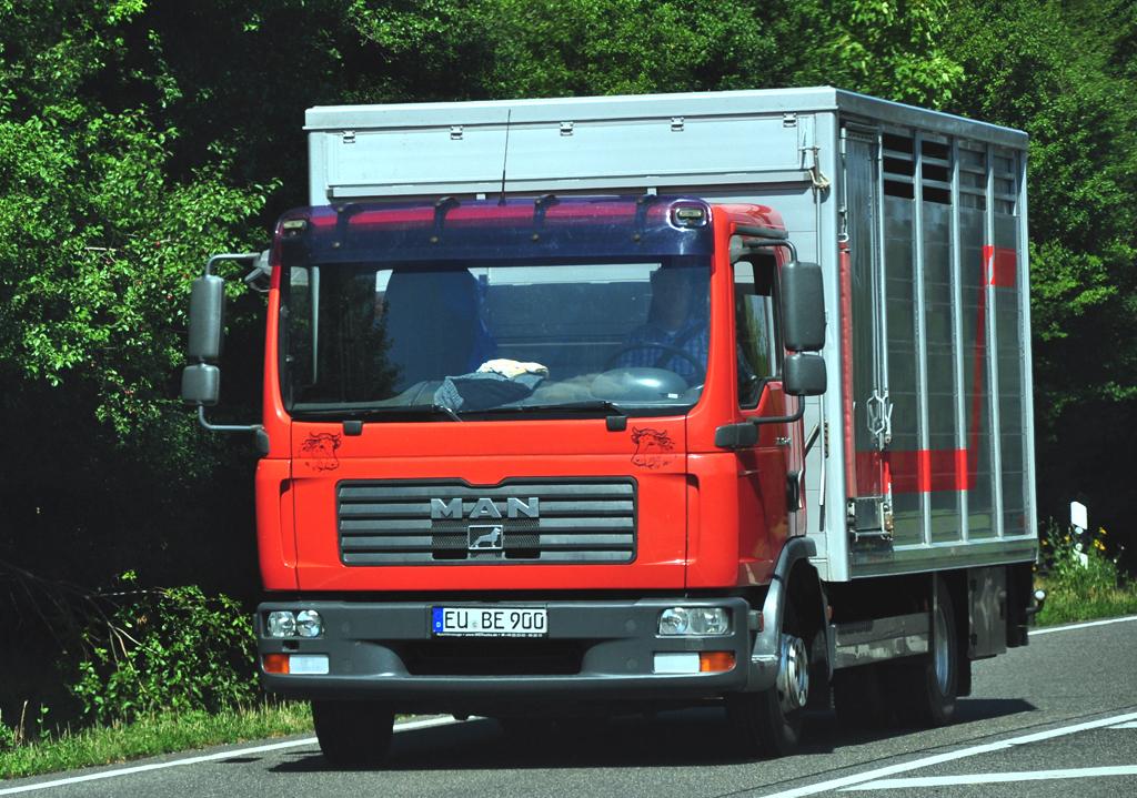 Man Tiertransporter Bei Euskirchen