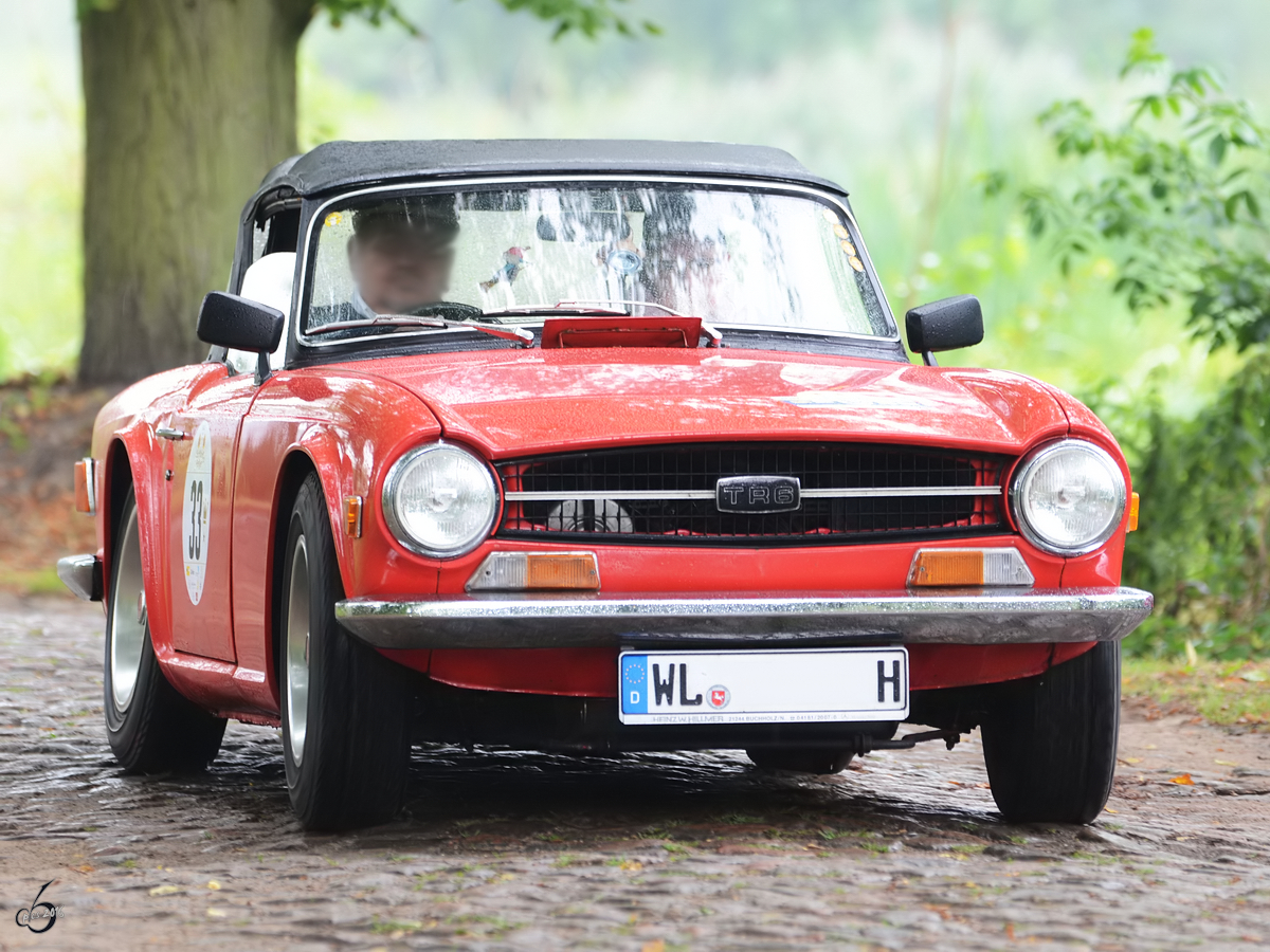 Ein British Leyland TR6 PI unterwegs in Nehringen. (August 2012)