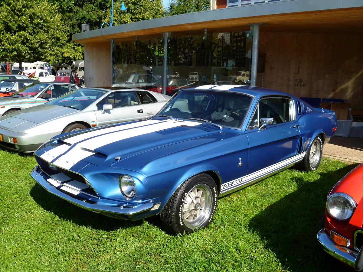 Ford Mustang Shelby GT 350, Vintage Cars & Bikes in Steinfort am 06.08.2016